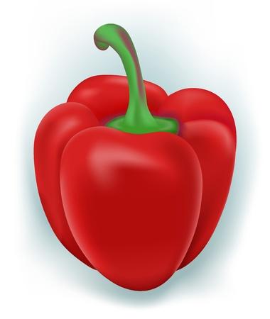 capsicums: Sweet Bulgarian pepper  Vector version