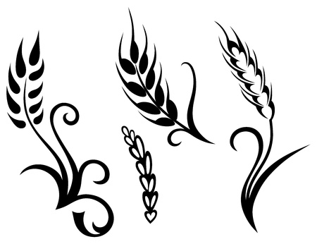 wheat illustration: Frumento e segale