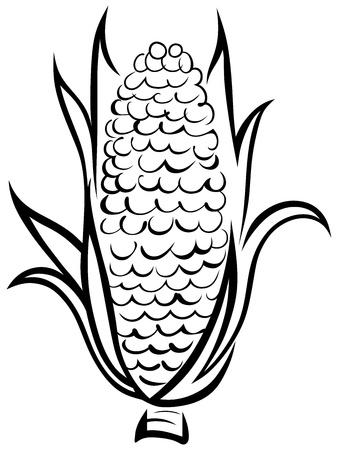 planta de maiz: Corn s�mbolo. Vector