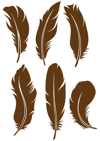 pen and ink: Feather Set
