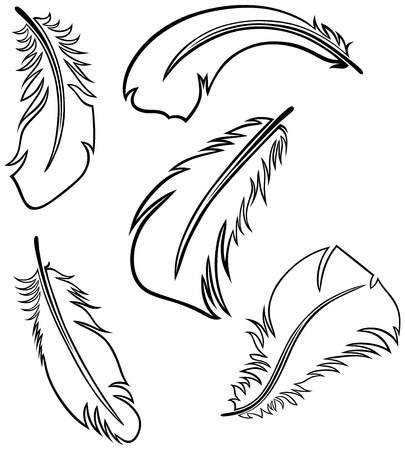 Feather Set Stock Vector - 15785580
