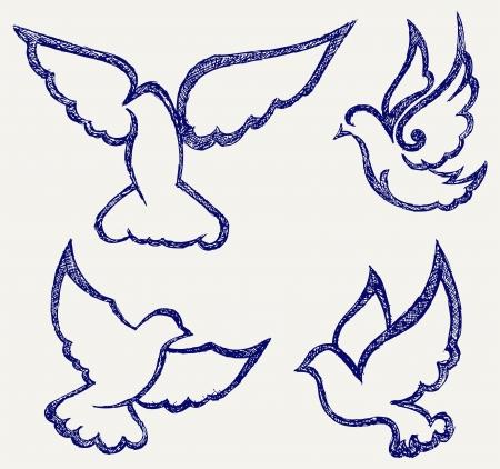 paloma símbolo