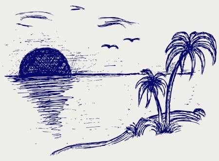 draw a sketch: Island palm