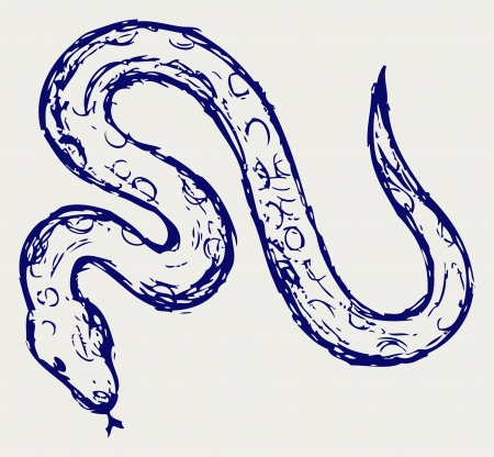 python: Snake sketch Illustration