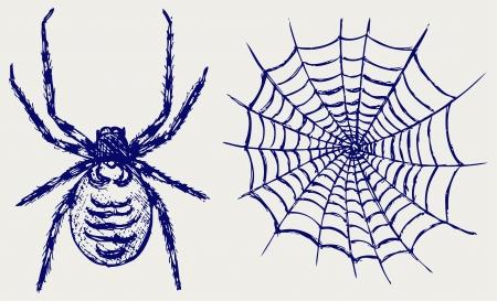 Spider and cobweb Stock Vector - 15843247