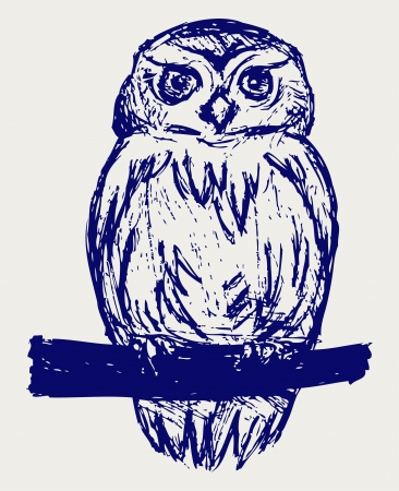 owl eyes: Great Owl. Sketch