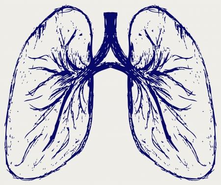Pulmones persona. Dibujo Ilustración de vector