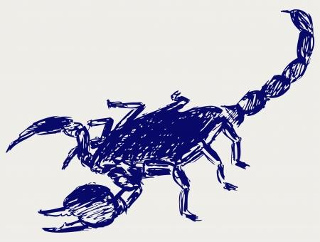 cartoon scorpion: Emperor Scorpion. Sketch