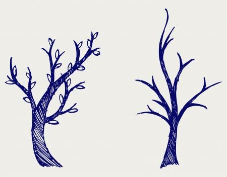 haya: Los �rboles siluetas estilo Doodle Vectores