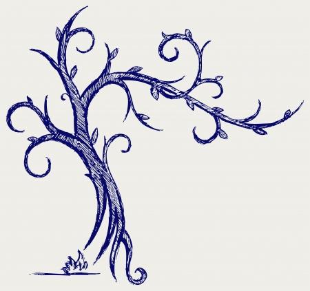 arbol alamo: Los �rboles siluetas estilo Doodle Vectores