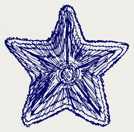 Starfish. Doodle style Vector