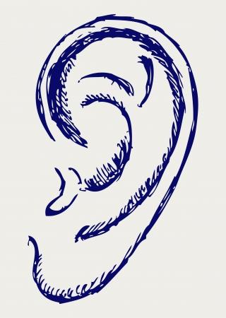 cartoon ear: Human ear. Doodle style