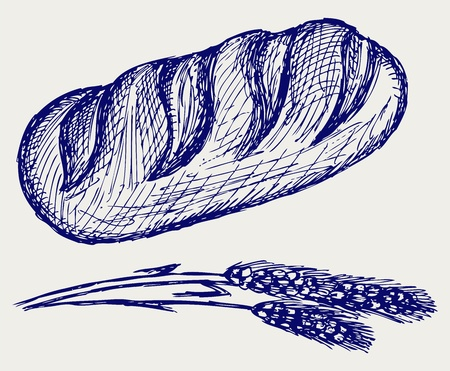 Long loaf. Doodle style Vector