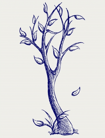 arbol alamo: �rboles siluetas. Estilo Doodle Vectores