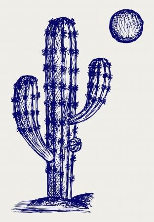 cactus flower: Cactus in desert. Doodle style
