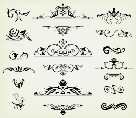 calligraphic design elements and page decoration - lots elements to embellish your layout Vector