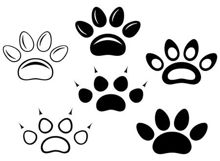animal paw prints: Animal paw prints
