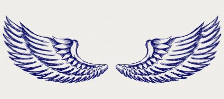 flap: Angel wings. Doodle style