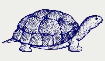 Ear tortoise  Doodle style Stock Vector - 16907907