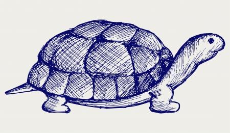 illustration line art: Ear tortoise  Doodle style