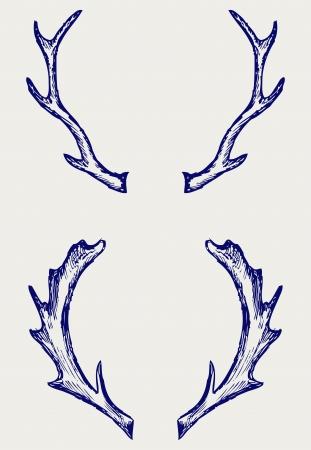 huge antlers: Deer horns. Doodle style Illustration
