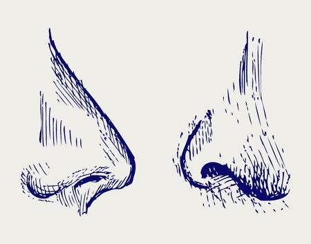 nostril: Nose  Doodle style