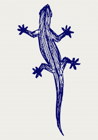 cling: Silhouette of a gecko. Doodle style