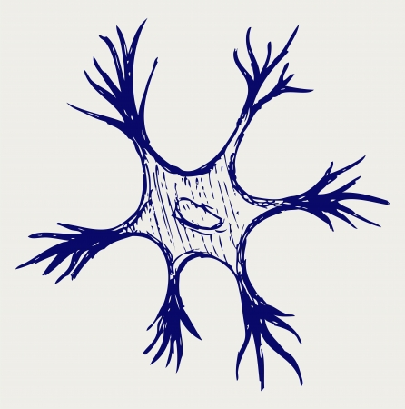 nerve cell: Illustration neuron. Doodle style