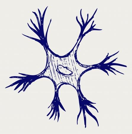 nervios: Ilustración neurona. Estilo Doodle Vectores