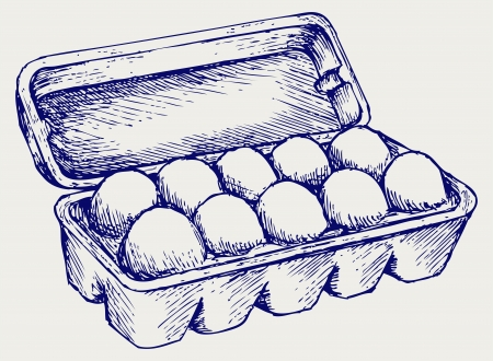styling: Eggs in a carton package. Doodle style