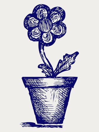 Daisies in pots. Doodle style Vector