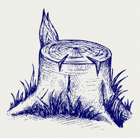Old tree stump. Doodle style Vector