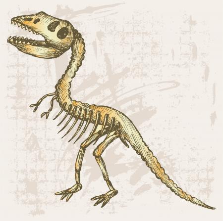 paleontological: Tyrannosaurus skeleton. Grunge style