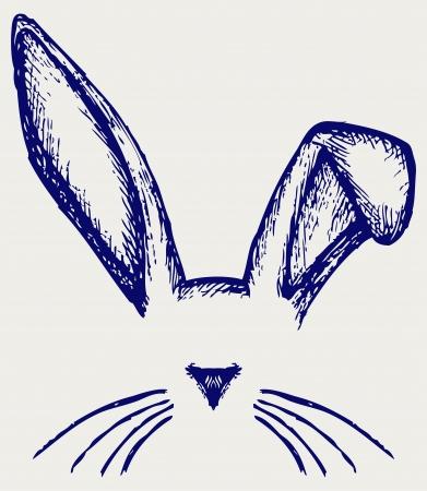 lapin: Oreilles de lapin de P�ques. Style Doodle Illustration