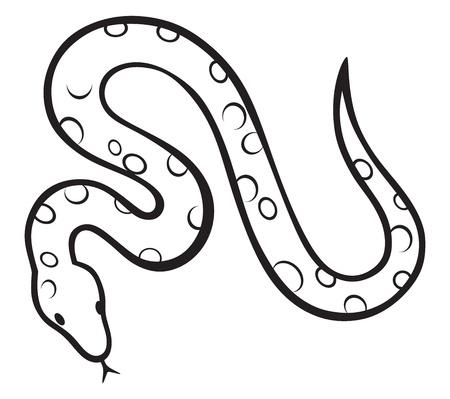 검은 뱀은 흰색 배경에 고립