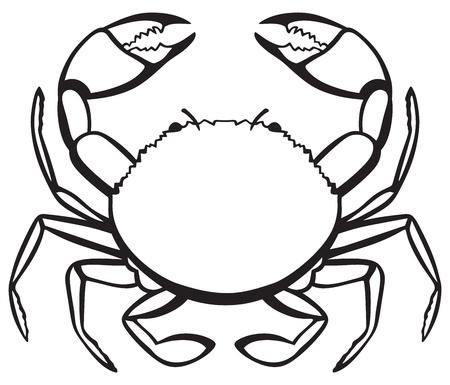 Silhouet krab geïsoleerd op witte achtergrond