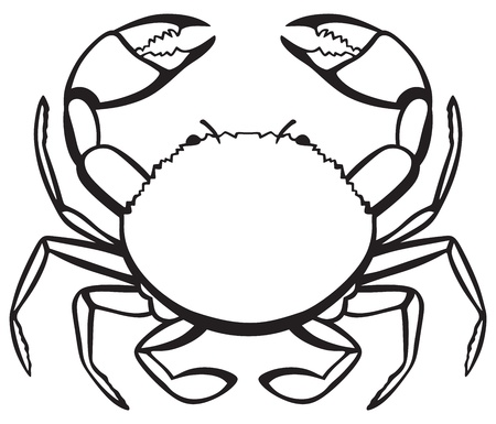 outline drawing of fish: Silhouette crab isolated on white background