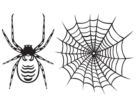 spidery: Spider and Web isolated on white background
