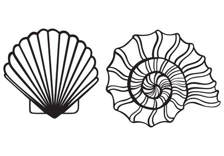 바다 포탄 흰색 배경에 고립 일러스트