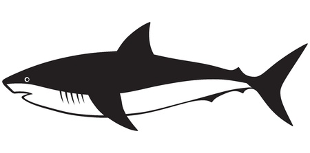 Silhouette shark isolated on white background Vector
