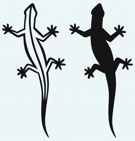 salamandre: Silhouette lézard isolé sur fond bleu