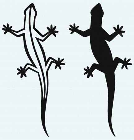 lizard: Silhouette lizard isolated on blue background Illustration