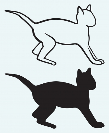Black cat silhouette isolated on blue background Vector
