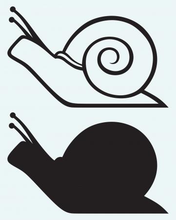 달팽이 파란색 배경에 고립