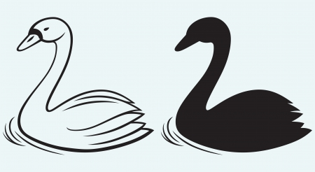 love image: Swans on pond isolated on blue background