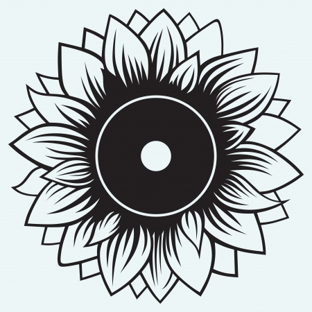 Sunflower isolated on blue background Ilustrace