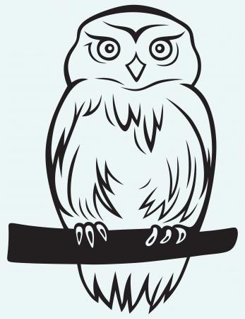 Eagle Owl isolated on blue background
