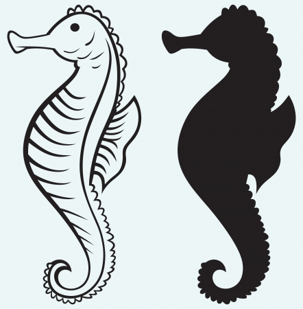 hippo campus: Seahorse isolated on blue background Illustration