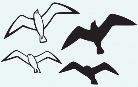 seabird: Silhouette of seagulls isolated on blue background Illustration