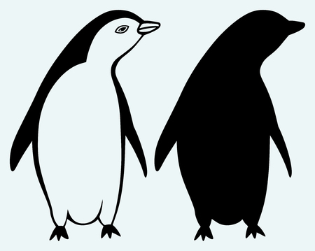 Cartoon penguin isolated on blue background Vector